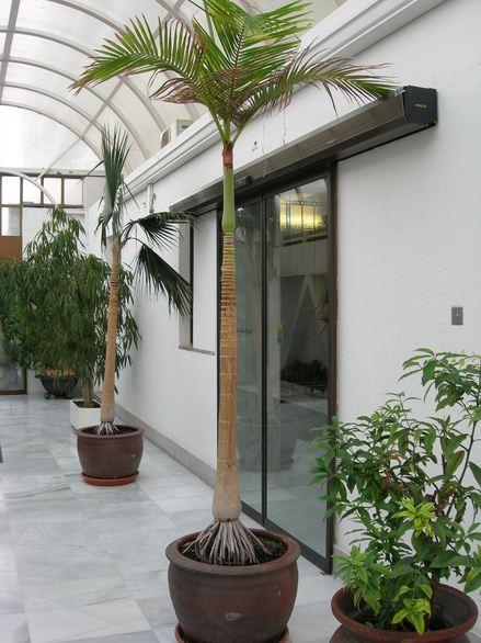 Casas con plantas