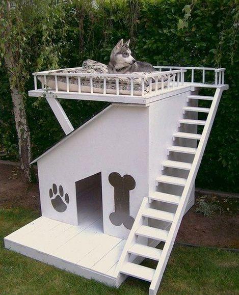 Diseños de casas para perros con terraza