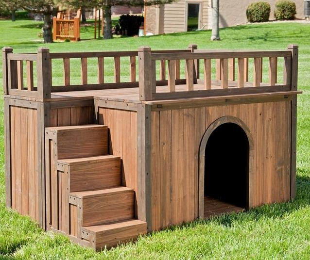 Disenos de casas para perros for 2 large dog house