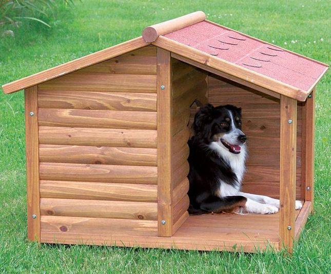 Dise Os De Casas Para Perros