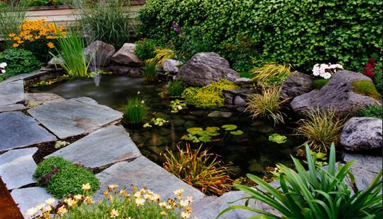Como hacer un estanque en casa for Estanque de cemento paso a paso