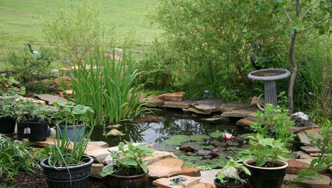 Como hacer un estanque en el jardin