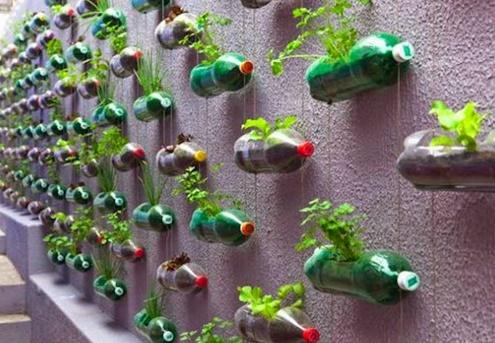 Plantas Para Jardines Verticales - Decoracion-de-jardines-con-plantas