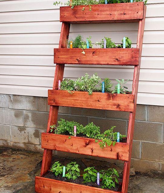 Ideas para jardines verticales caseros for Jardin vertical casero palet